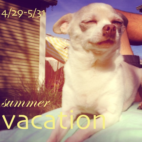 vacation photo